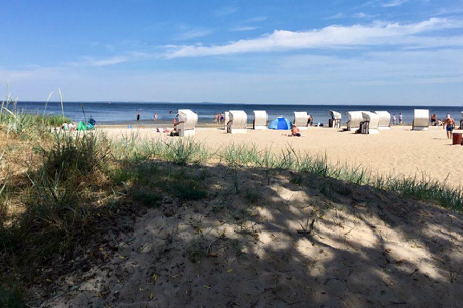 Oder-Neiße Radweg zur Ostsee: von Angermünde über Pasewalk nach Usedom