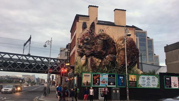 Das Eichhörnchen in Dublin