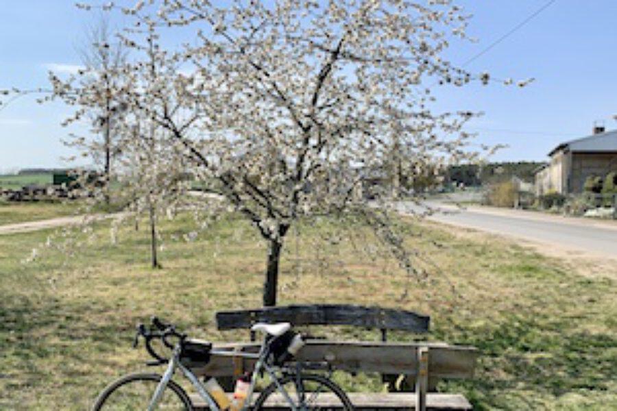 5 Tipps für die perfekte Radtour